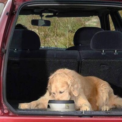 Road Refresher mahaloksumisvastane lemmiklooma veekauss, väike, SGRR
