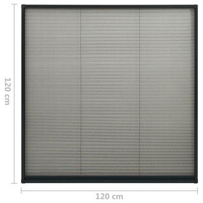 vidaXL plisseeritud putukavõrk aknale alumiinium antratsiit 120x120 cm, Anthracite