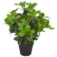 vidaXL kunsttaim loorberipuu potiga, roheline, 40 cm