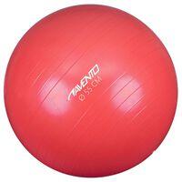 Avento fitness-pall 55 cm läbimõõt, roosa